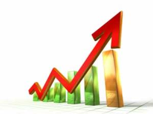 kinerja keuangan organisasi