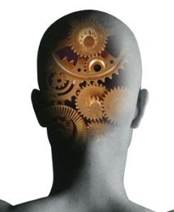 NLP head